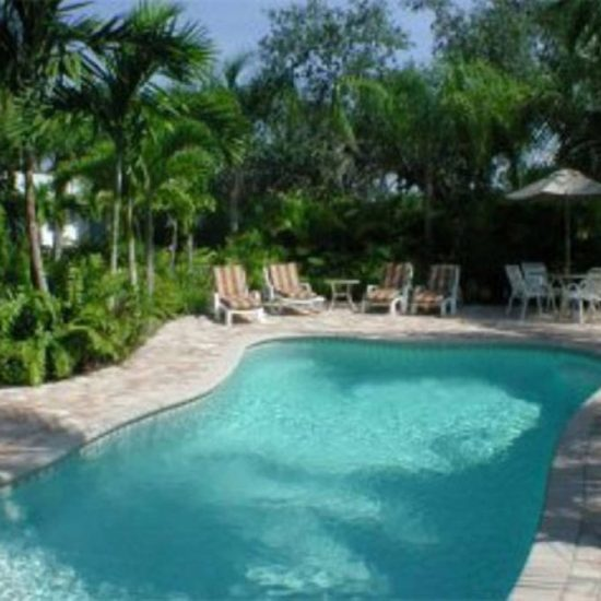 Endless Summer Backyard Pool | CSE Properties, Naples, FL