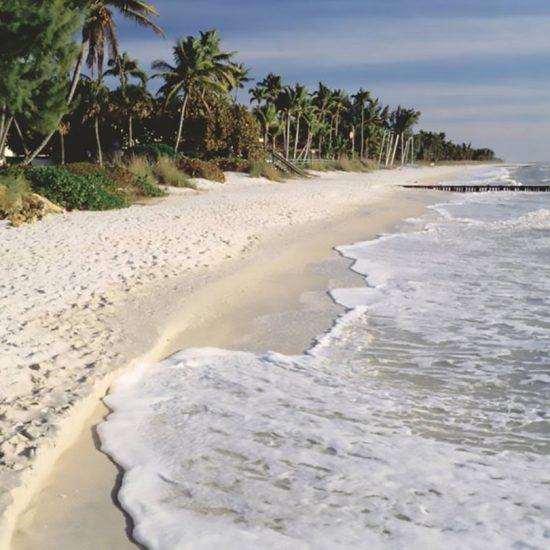 Beach | CSE Properties, Naples, FL