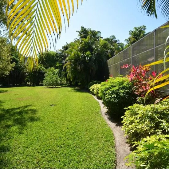 CSE Properties - Natalya's Tropical Estate Paradise Backyard