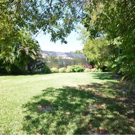 CSE Properties - Natalya's Tropical Estate Paradise Backyard