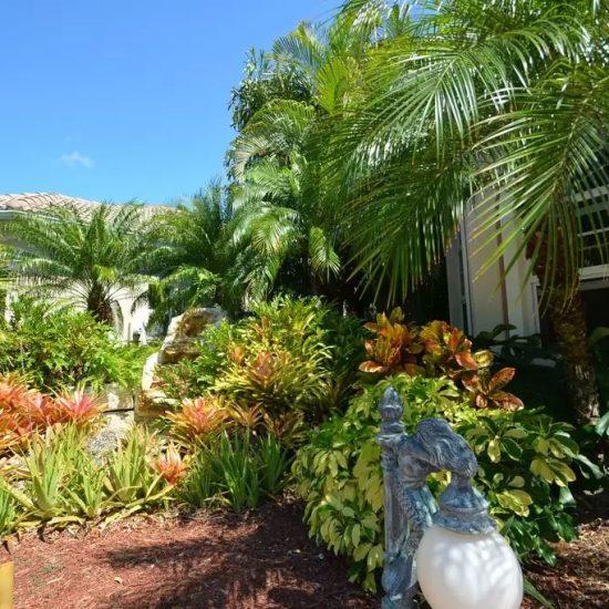 CSE Properties - Natalya's Tropical Estate Paradise Landscaping