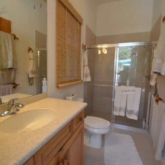 CSE Properties - Natalya's Tropical Estate Paradise Bathroom 3