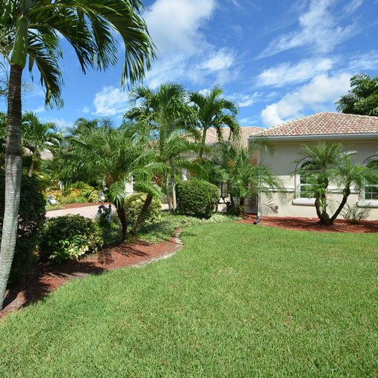 CSE Properties - Natalya's Tropical Estate Paradise Landscaping