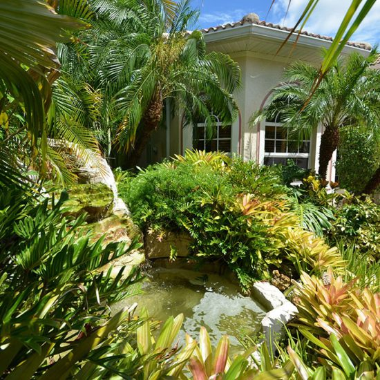 CSE Properties - Natalya's Tropical Estate Paradise Waterfall
