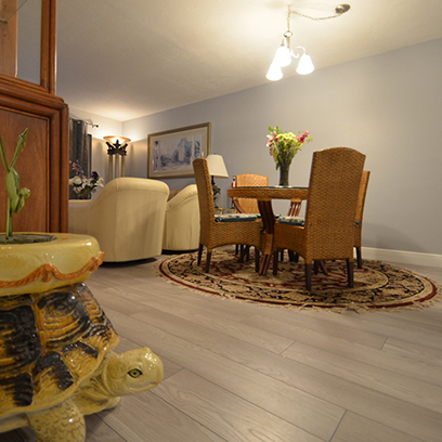 CSE Properties - Turtle Lakes Dining & Living Area